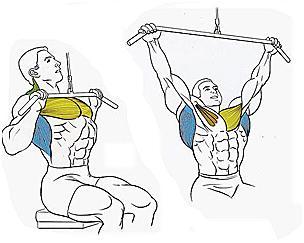 как нарастить мышцы сжечь жир